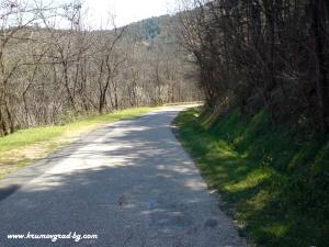 Пътят към Егрек