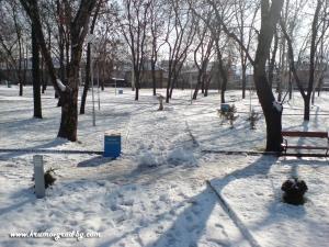 Парка през зимата