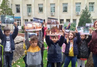 """Учениците от 2 """"а"""" клас на иновативна екскурзия в Хасково"""