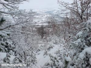 Изглед от хижата през зимата