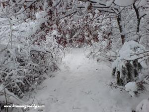 Крумовград зима 12