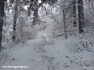 Крумовград зима 13
