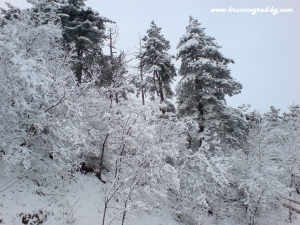 Крумовград зима 14