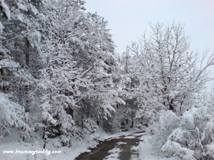 Крумовград зима 16