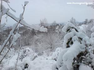 Крумовград зима 24