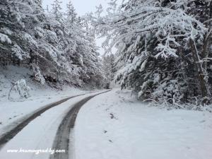 Пътят към хижата рез зимата