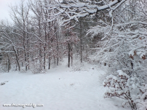 Зима в крумовград 34