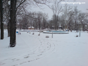 Парка през зимата 43