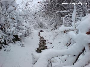 Зима в Крумовград 46