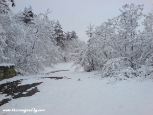 Зима в Крумовград 7
